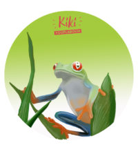 illustration Costa Rica grenouille