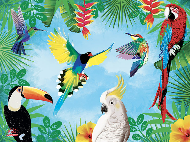 Site web Kiki Youplaboum : illustration jungle